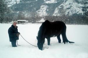 stephanie_durand_winter